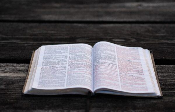 Disciplinary Literacy: COMING SOON